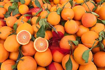 granita orangen typisch tradition sizilien ferien essen trinken guide