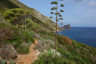 favignana marettimo levanzo ägadische egadische sizilianische inseln sizilien ferien guide unberührte natur wandern